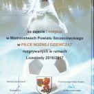 dyplomy_wyroznienia_031